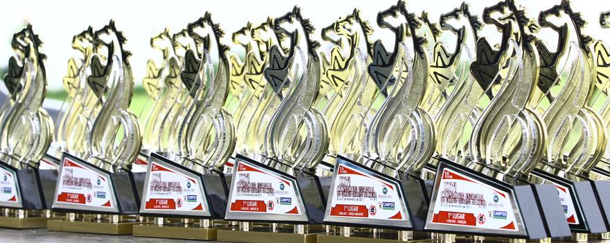 premiações rodeios