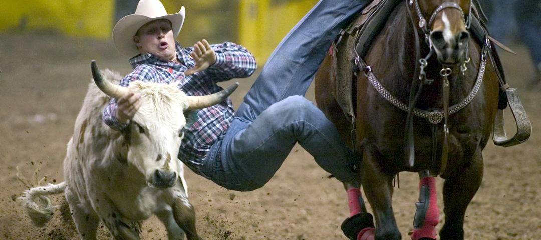 Steer Wrestling - modalidade