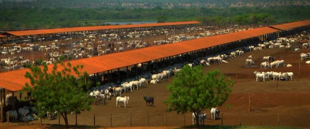 Grandes fazendas do Brasil