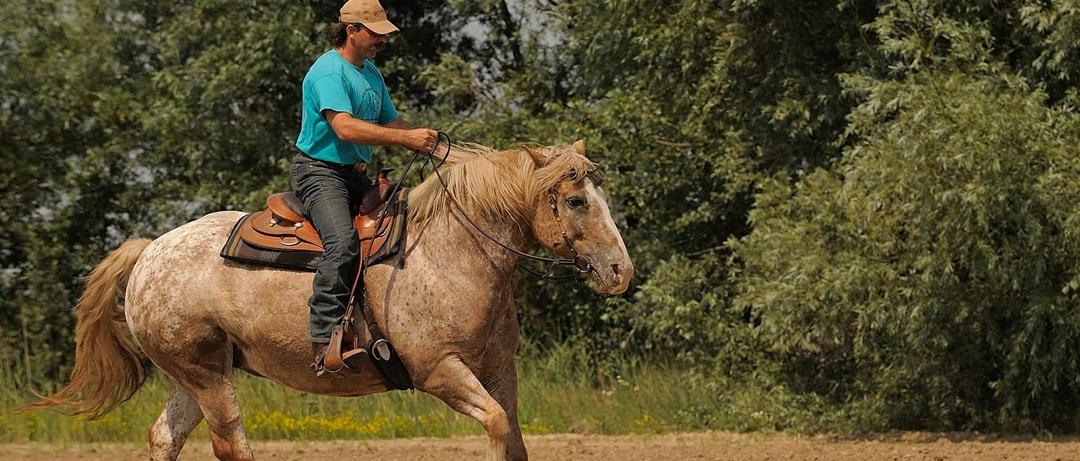 Você sabe diferenciar um Cowboy tradicional do moderno?