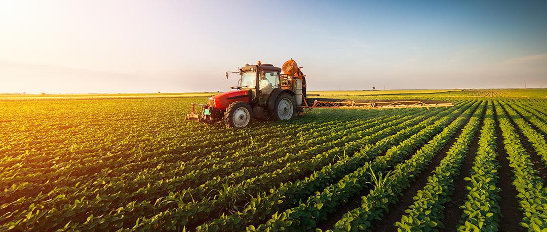 A importância do Seguro Agrícola
