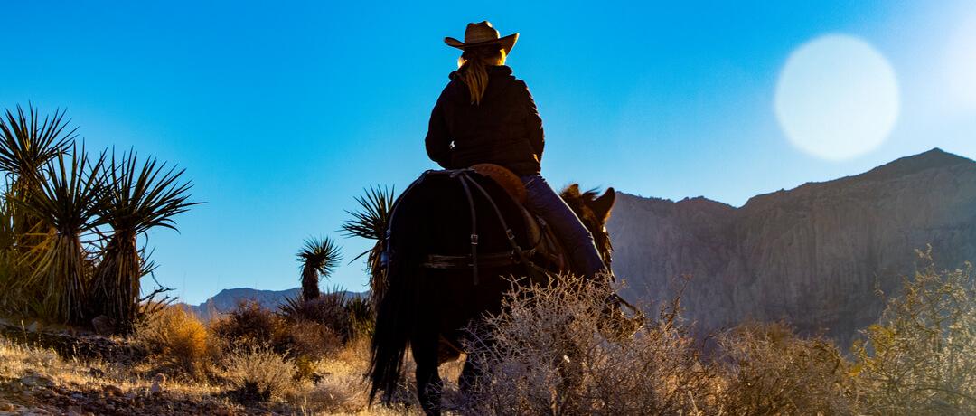 Filmes de Cowboy